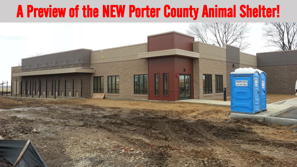 New Animal Shelter Building As Of Feb 25