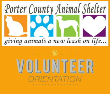 volunteerposter